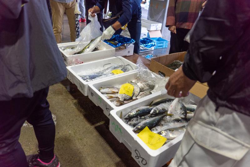 【うすきの魚】何をもらえた?楽しめたのかな?お魚の販売