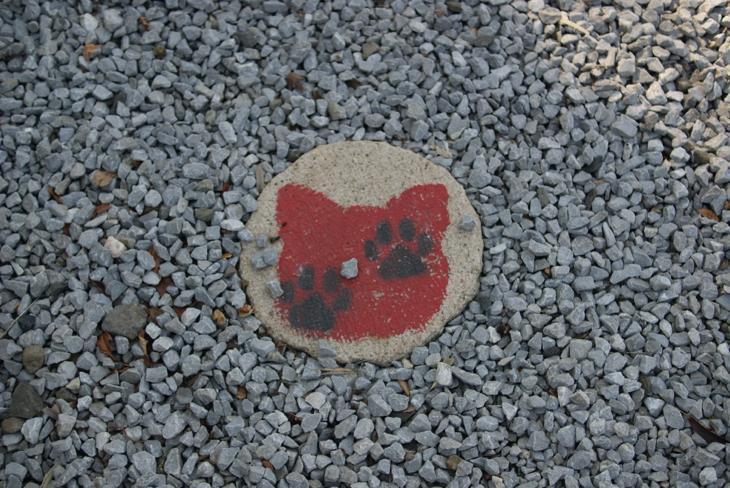 福良天満宮の境内にある赤猫