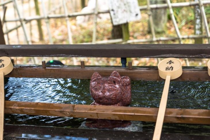 臼杵市の福良天満宮の境内の赤猫